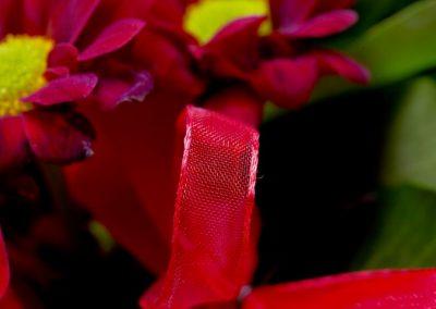 BRS4005 Red Mini B 33 1
