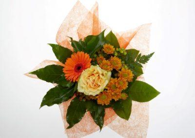 BRS9607 mini orange autumn