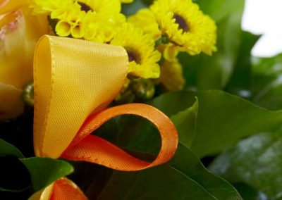 BRS9611 mini yellow autumn 2