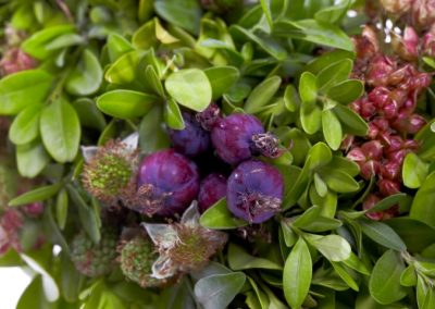 RF16202 buxus ring with apple berries 2