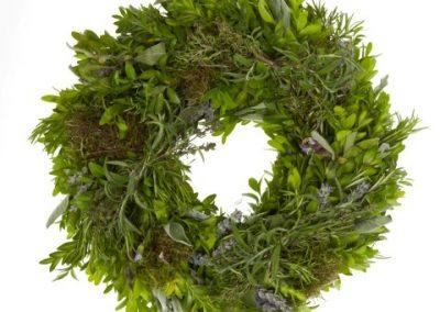 RF9011 buxu moos herbst 1